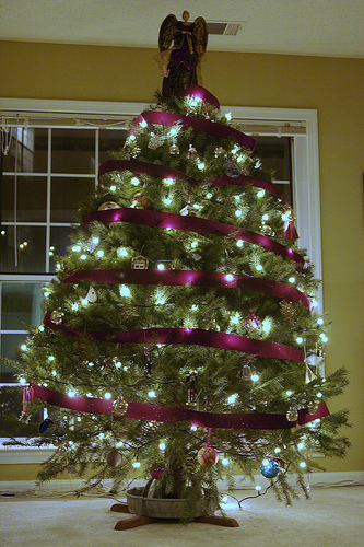 [Christmas Tree 2005 at Home in Arlington, Virginia]